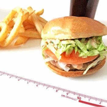 悩み・症状別、食品選びのポイント|内臓脂肪が気になる