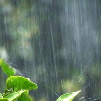 梅雨のだるさを乗り切る方法