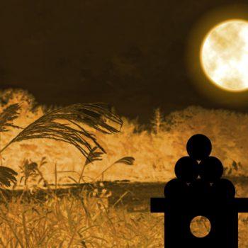 中秋の名月は別名芋名月。カロリー控えめこれからが旬の里芋