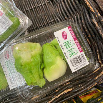 福岡特産の博多蕾菜(つぼみな)で新陳代謝を活性化!